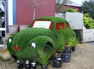 Herbie the grass car